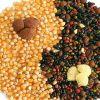 Философия здорового питания Инь-Янь по Фен-шуй